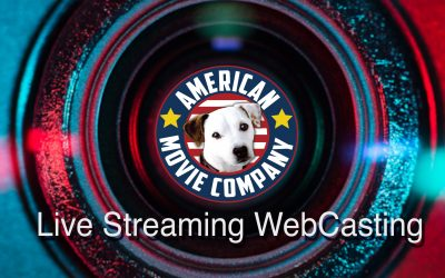 WebCasting & Live Streaming Video For Children